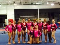 USA Hot Pink Competition Leotard