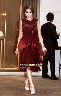 Fall 2012 Chiffon Dress