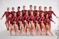 Mesmerize Competition Leotard