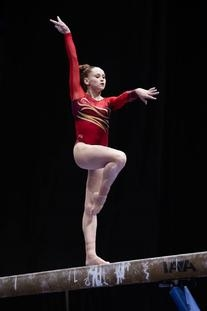 Whirlwind Competitive Leotard